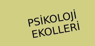 Psikoloji Ekolleri
