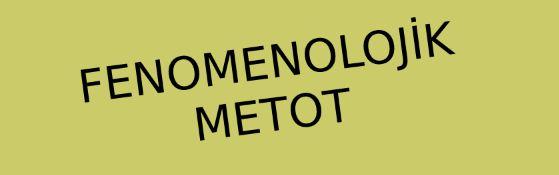 Fenomenolojik Metot Nedir?